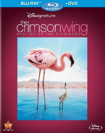 The Crimson Wing Mystery of the Flamingos 2008 1080p BRRip H264 AAC-SaNKoE