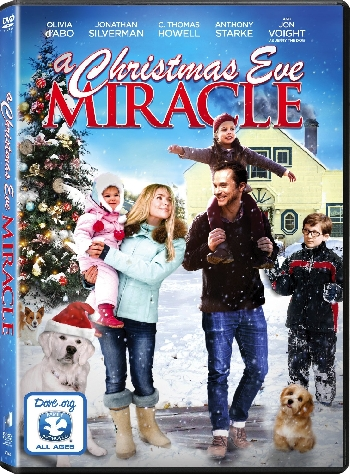 A Christmas Eve Miracle 2015 DVDRip XviD-EVO