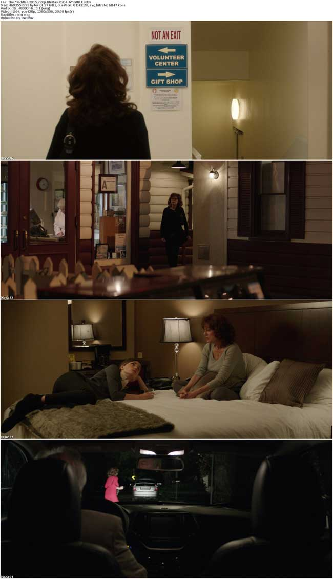 The Meddler 2015 720p BluRay X264-AMIABLE