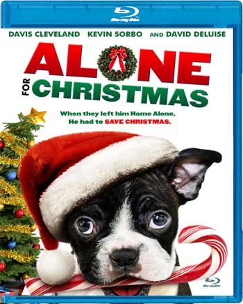 Alone for Christmas 2013 720p BluRay x264-STRATOS
