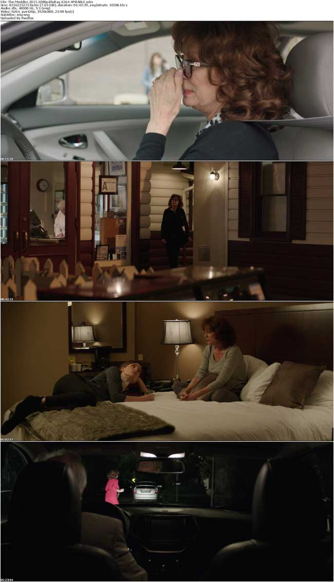 The Meddler 2015 1080p BluRay X264-AMIABLE