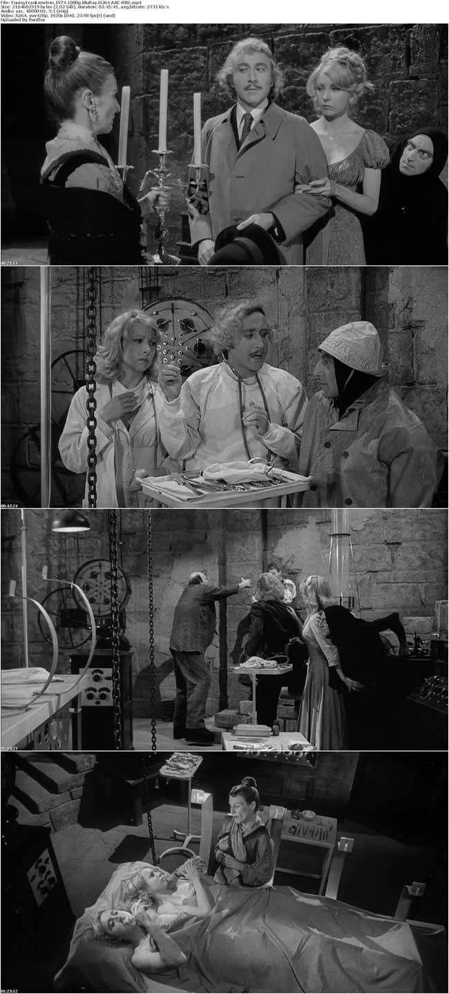 Young Frankenstein 1974 1080p BluRay H264 AAC-RBG
